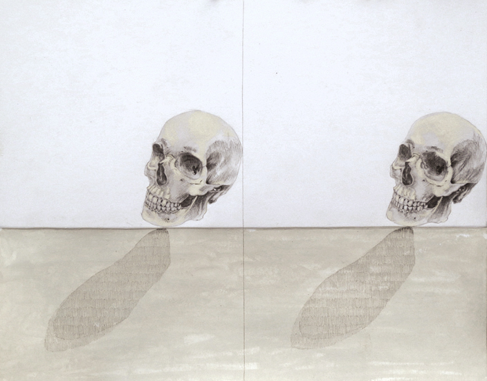 Untitled(two skulls)